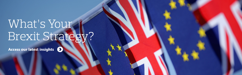 EU Referendum: Understanding the Impact to Your Business