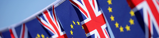 Learn More about Risk and Brexit: Contact an Aon Expert