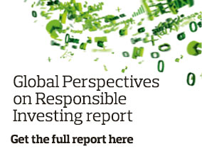Global Perspectives on Responsible Investing is now available