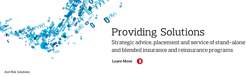 Professional Services - Aon