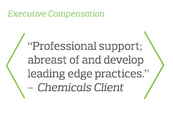 Professional support; abreast of and develop leading edge practices - Chemicals Client