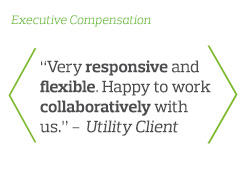 Very responsive and flexible. Happy to work collaboratively with us - Utility Client