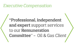 Professional, independent and expert support services to our Remuneration Committee - Oil & Gas Client