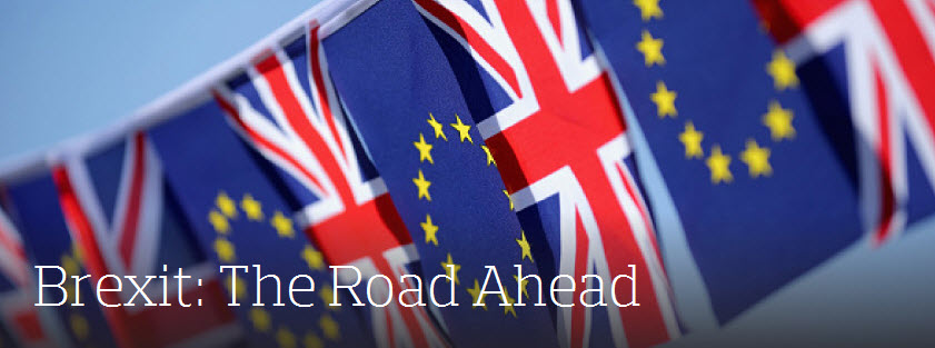 Brexit: The Road Ahead